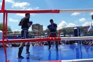 kick-boxing-petrica-purcaru